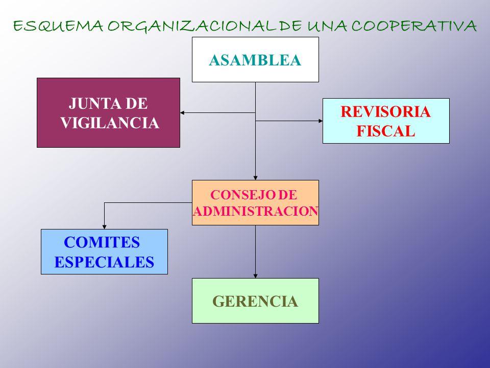 ESQUEMA ORGANIZACIONAL DE UNA COOPERATIVA