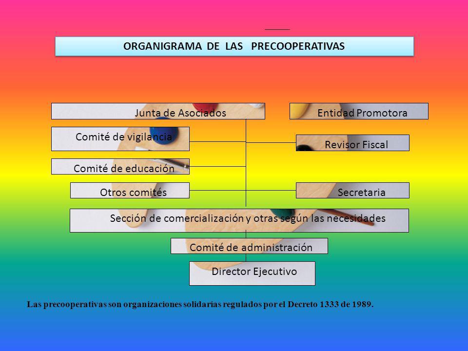 ORGANIGRAMA DE LAS PRECOOPERATIVAS