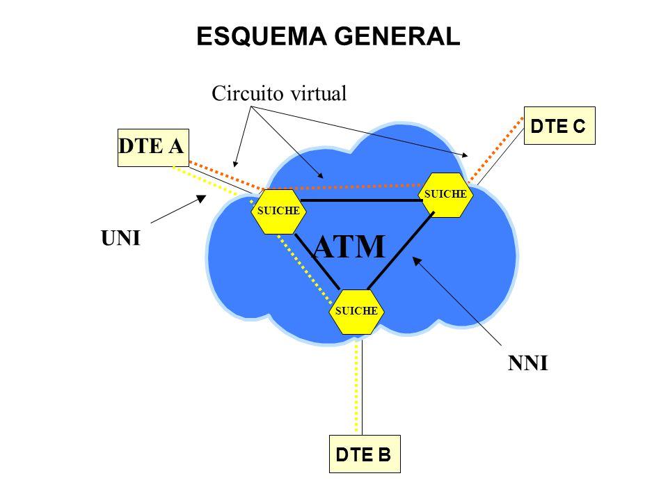 ATM ESQUEMA GENERAL Circuito virtual DTE A UNI NNI DTE C DTE B SUICHE