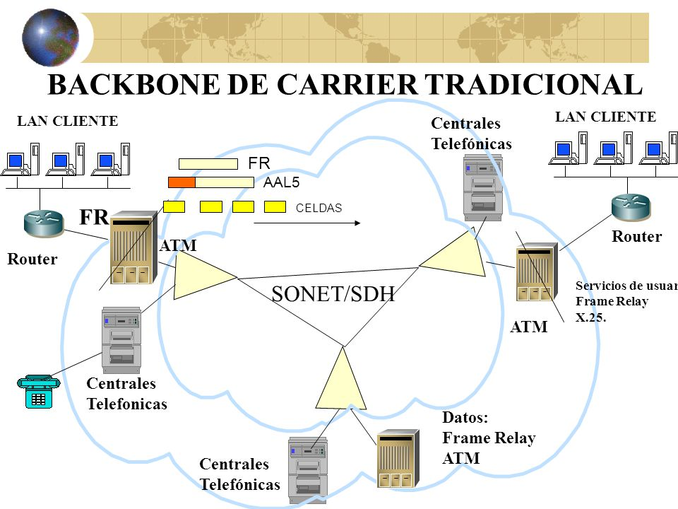 BACKBONE DE CARRIER TRADICIONAL
