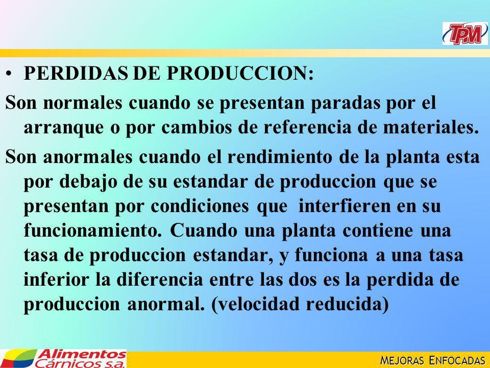 PERDIDAS DE PRODUCCION: