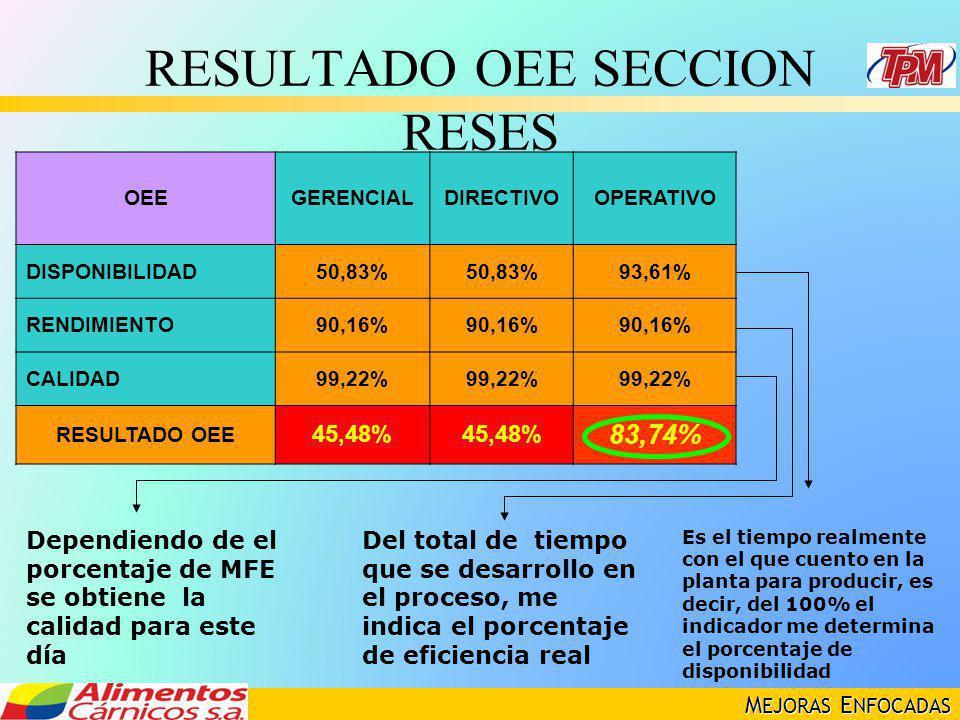 RESULTADO OEE SECCION RESES