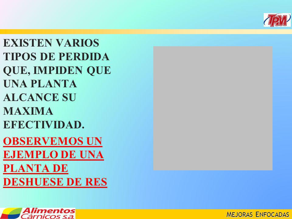 EXISTEN VARIOS TIPOS DE PERDIDA QUE, IMPIDEN QUE UNA PLANTA ALCANCE SU MAXIMA EFECTIVIDAD.