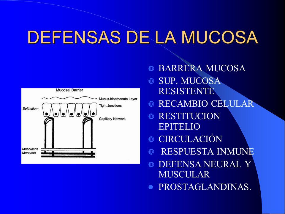 DEFENSAS DE LA MUCOSA BARRERA MUCOSA SUP. MUCOSA RESISTENTE
