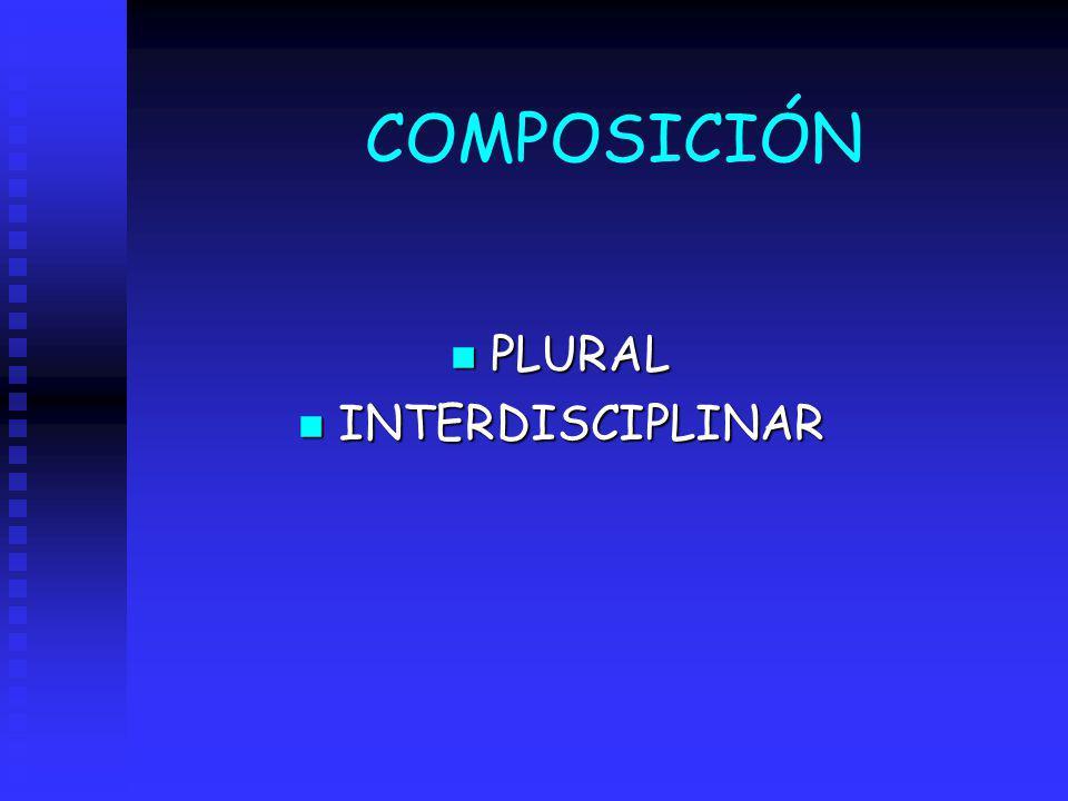 COMPOSICIÓN PLURAL INTERDISCIPLINAR