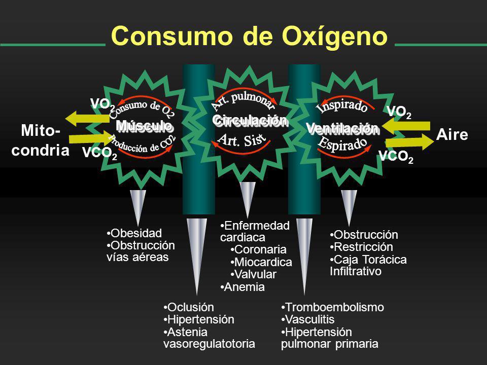 Consumo de Oxígeno Art. pulmonar Consumo de O2 Producción de CO2