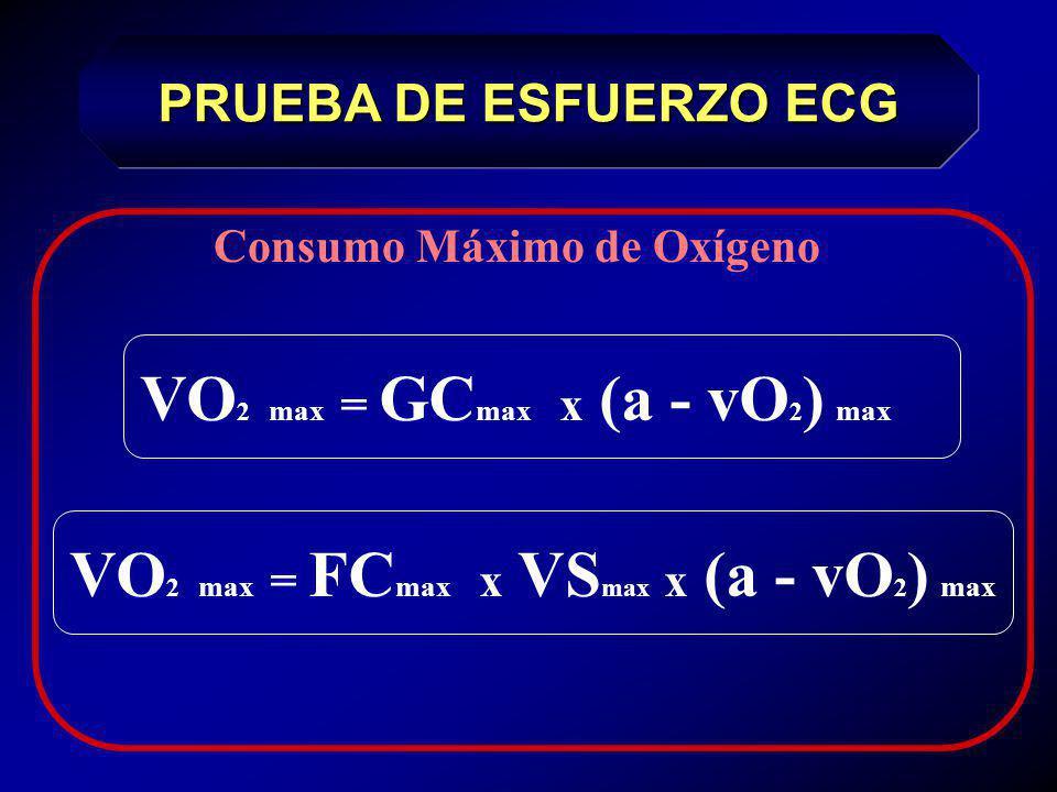 VO2 max = GCmax x (a - vO2) max