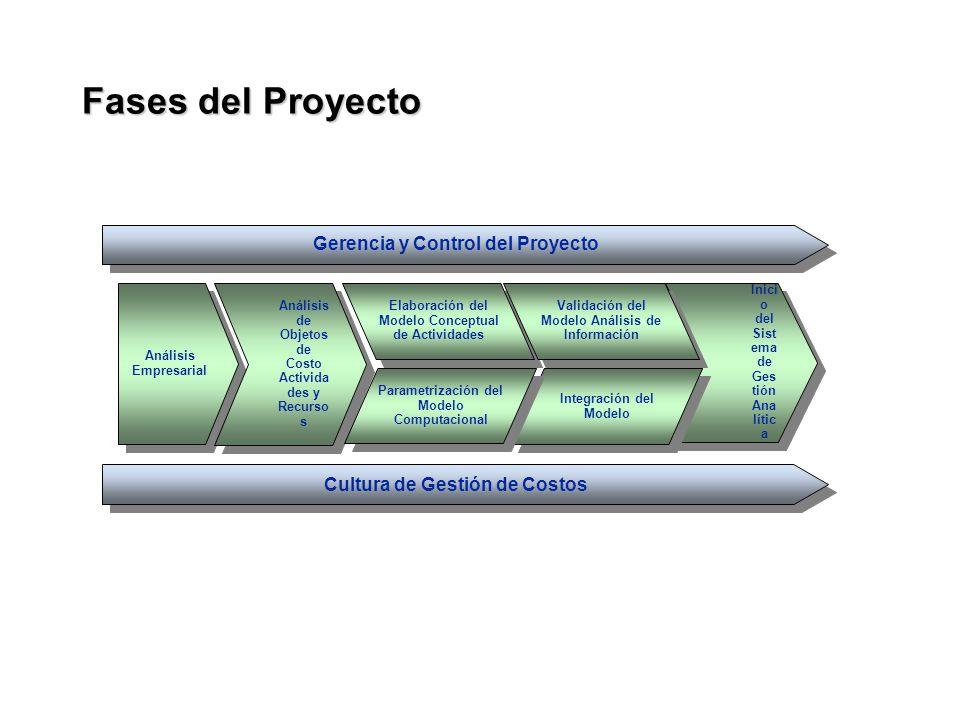 Fases del Proyecto Gerencia y Control del Proyecto