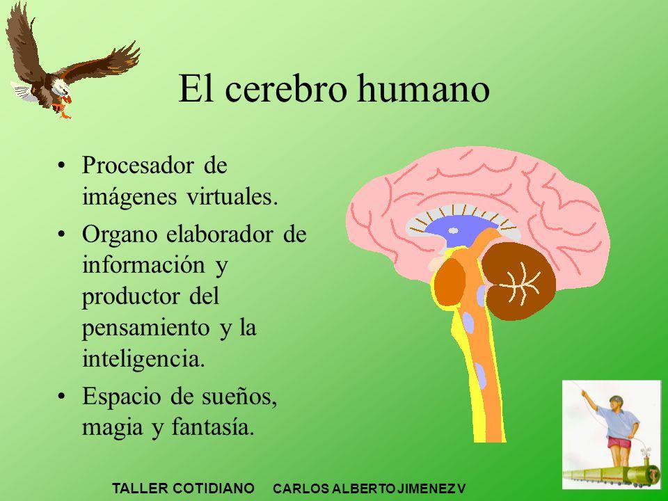 El cerebro humano Procesador de imágenes virtuales.