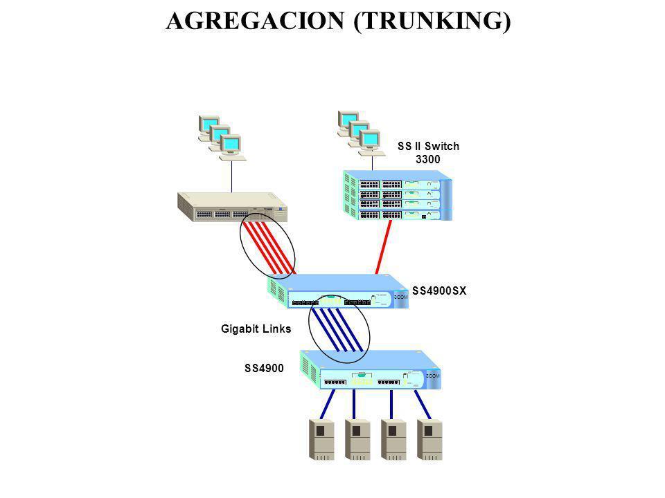 AGREGACION (TRUNKING)