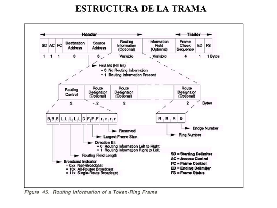 ESTRUCTURA DE LA TRAMA