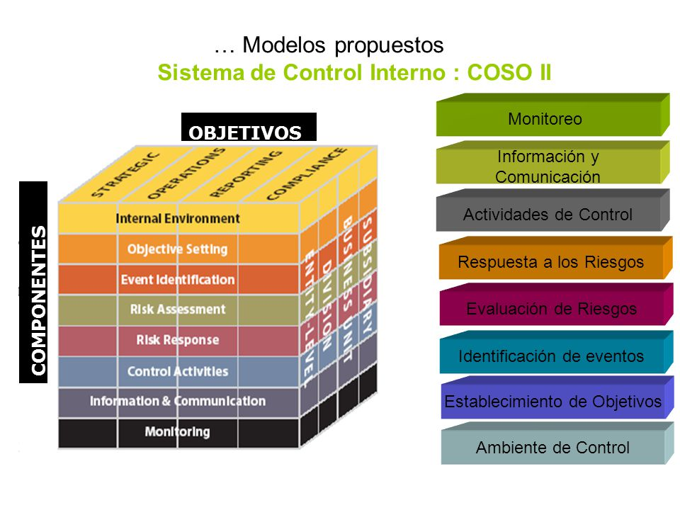 OBJETIVOS COMPONENTES
