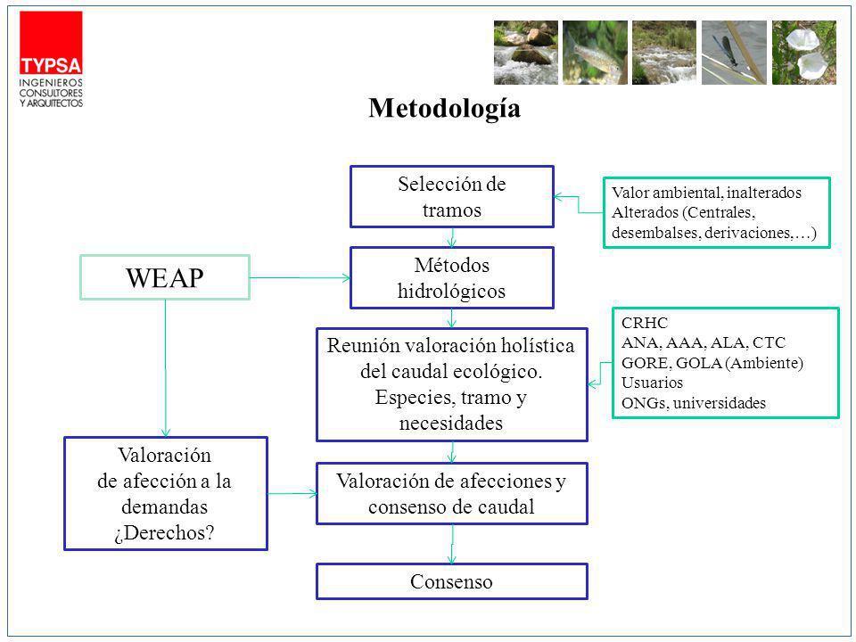 Metodología WEAP Selección de tramos Métodos hidrológicos