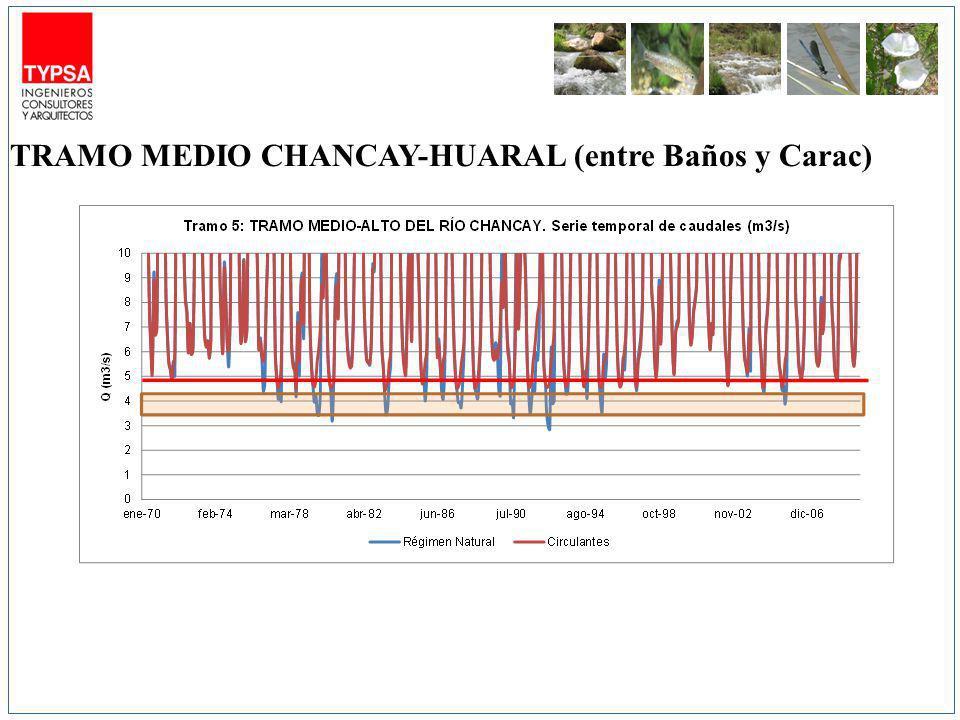 TRAMO MEDIO CHANCAY-HUARAL (entre Baños y Carac)