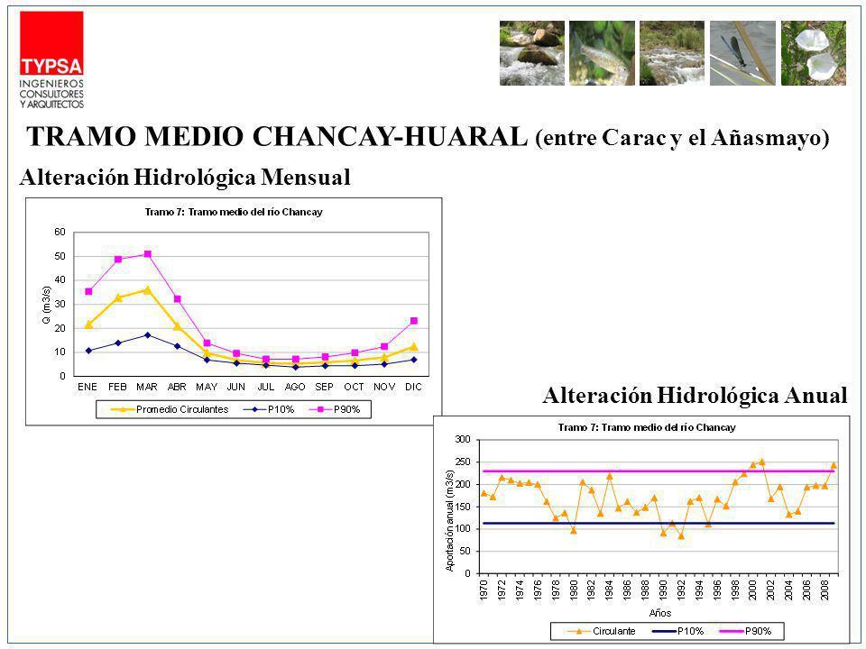 TRAMO MEDIO CHANCAY-HUARAL (entre Carac y el Añasmayo)
