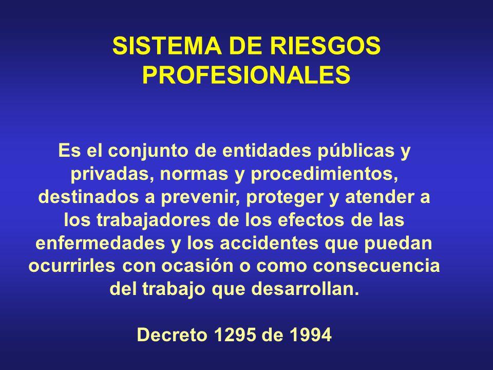SISTEMA DE RIESGOS PROFESIONALES