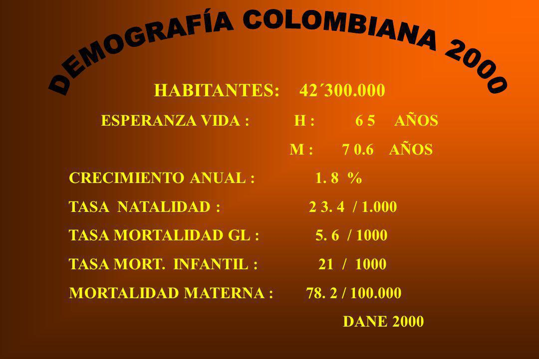 DEMOGRAFÍA COLOMBIANA 2000