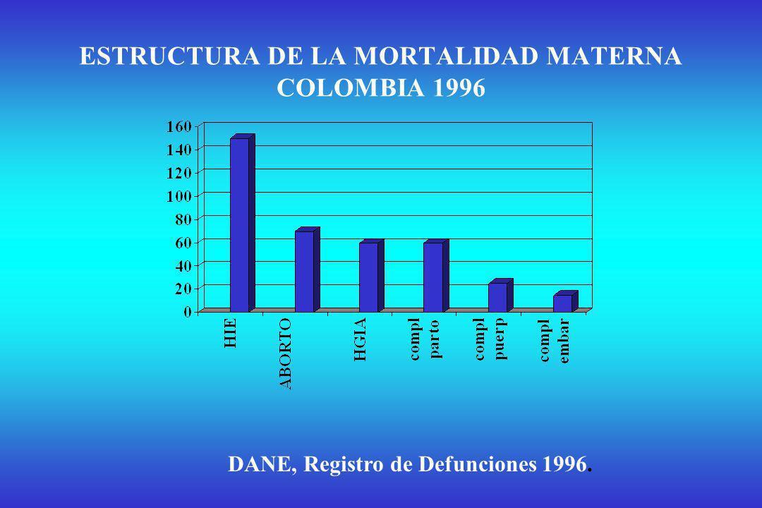 ESTRUCTURA DE LA MORTALIDAD MATERNA COLOMBIA 1996