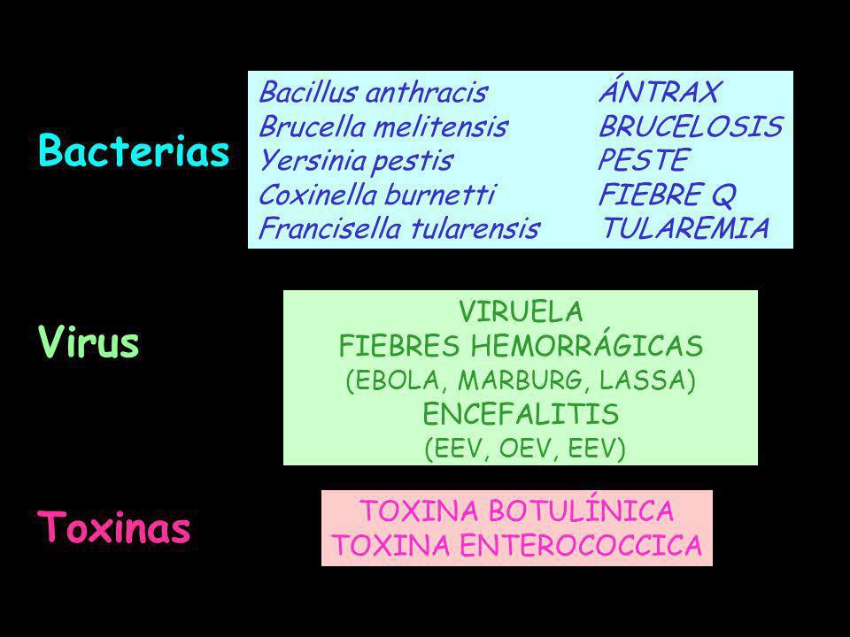 Bacterias Virus Toxinas Bacillus anthracis ÁNTRAX