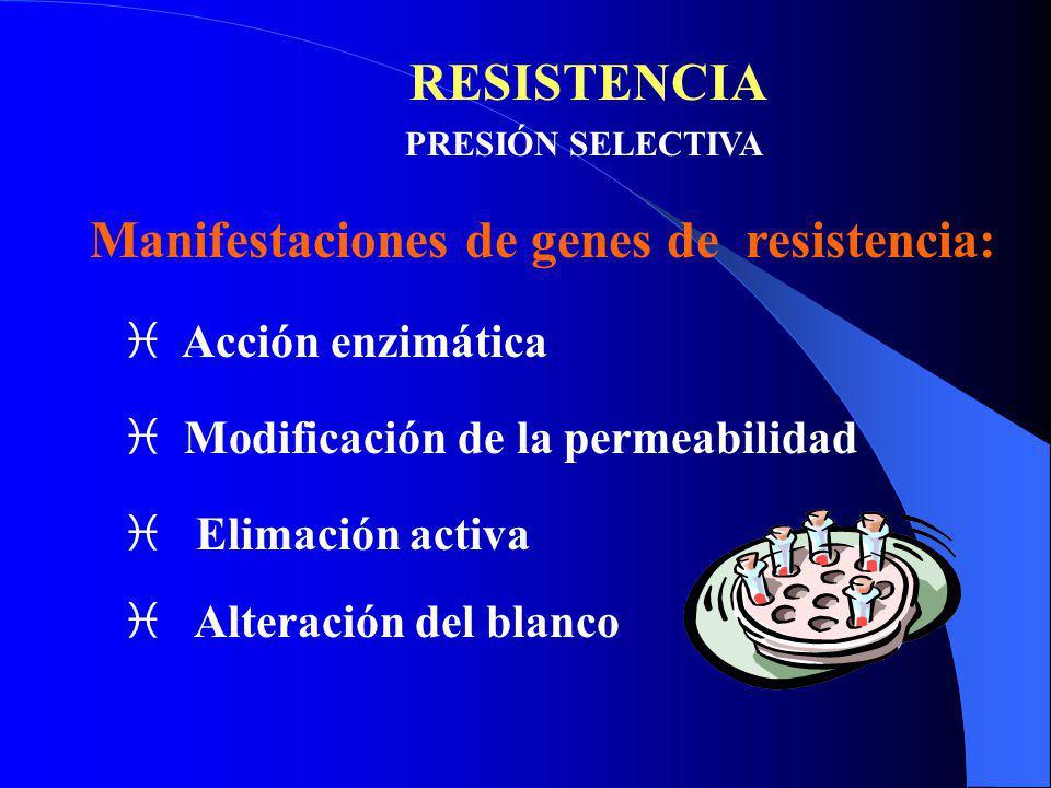 Manifestaciones de genes de resistencia: