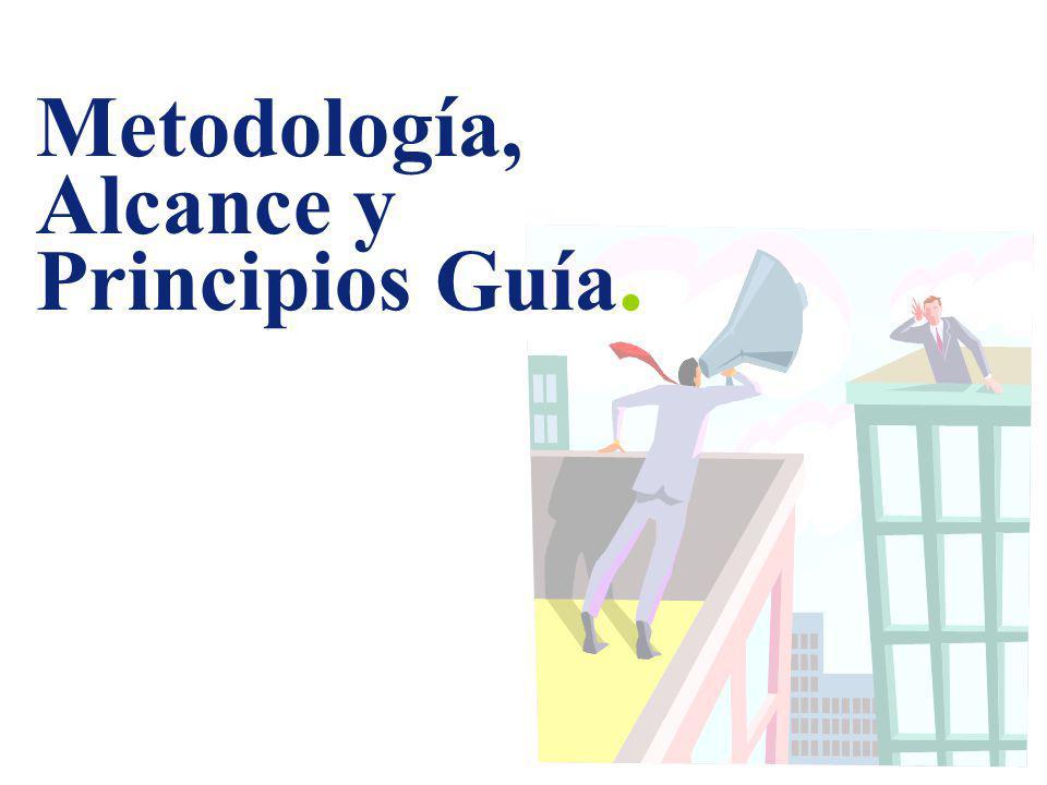 Metodología, Alcance y Principios Guía.
