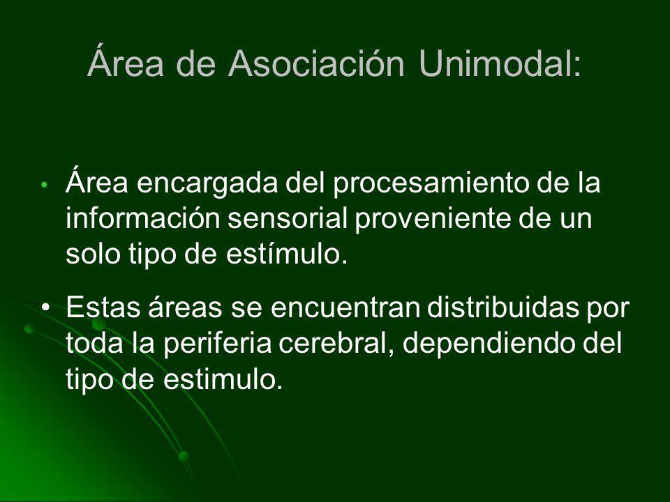 Área de Asociación Unimodal: