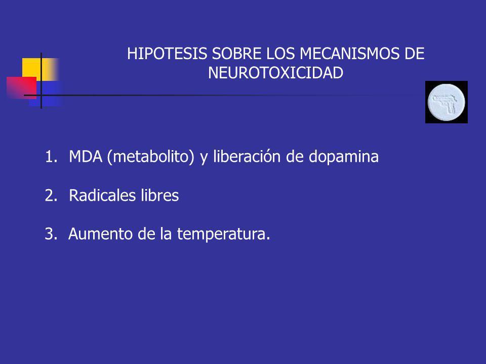 HIPOTESIS SOBRE LOS MECANISMOS DE NEUROTOXICIDAD