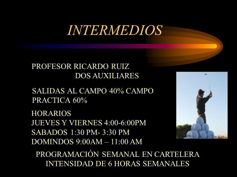 INTERMEDIOS PROFESOR RICARDO RUIZ DOS AUXILIARES
