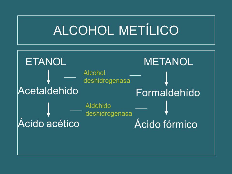 ALCOHOL METÍLICO ETANOL METANOL Acetaldehido Formaldehído
