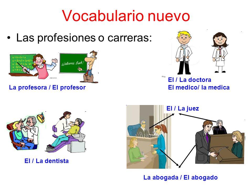 Vocabulario nuevo Las profesiones o carreras: El / La doctora