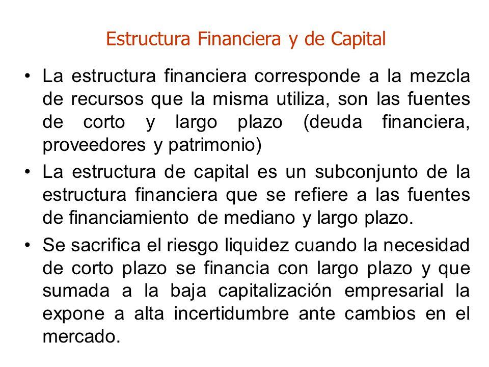 Estructura Financiera y de Capital