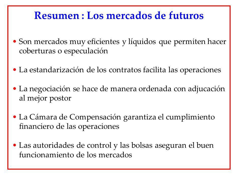 Resumen : Los mercados de futuros
