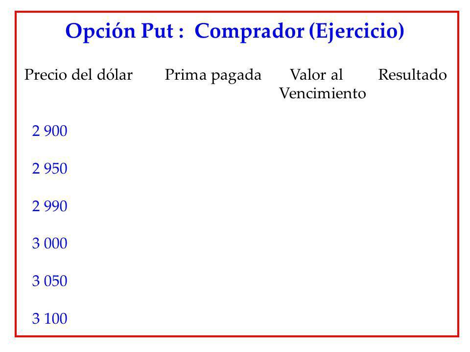 Opción Put : Comprador (Ejercicio)