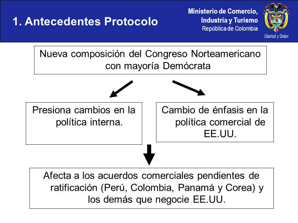 1. Antecedentes Protocolo