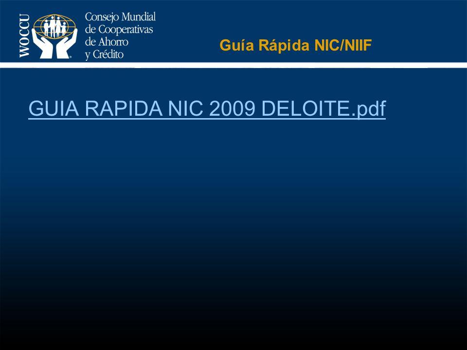 GUIA RAPIDA NIC 2009 DELOITE.pdf