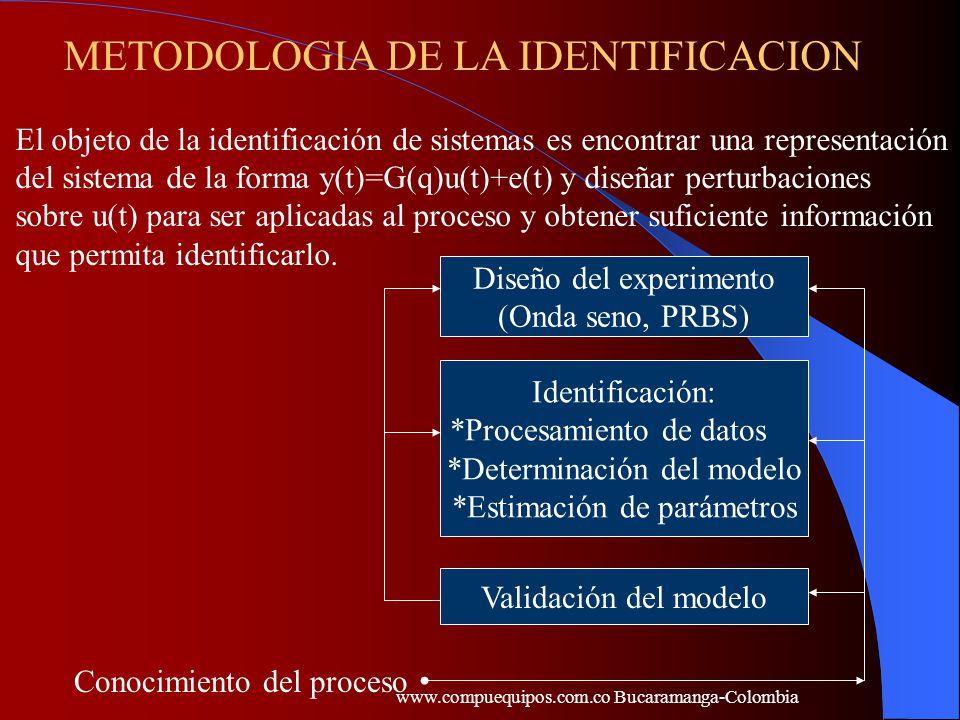 METODOLOGIA DE LA IDENTIFICACION