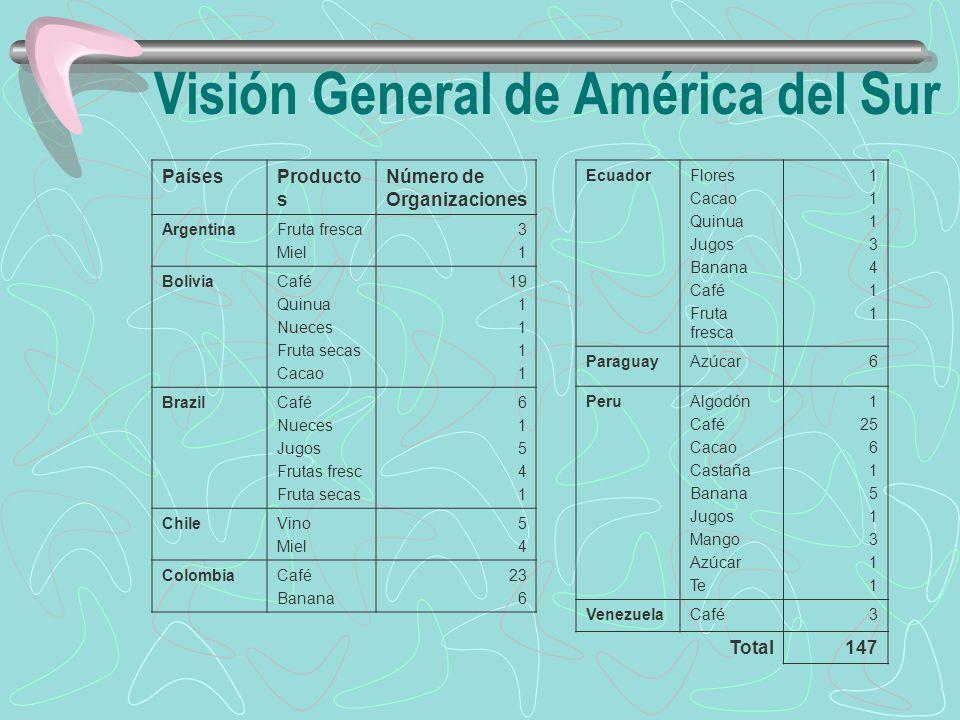 Visión General de América del Sur