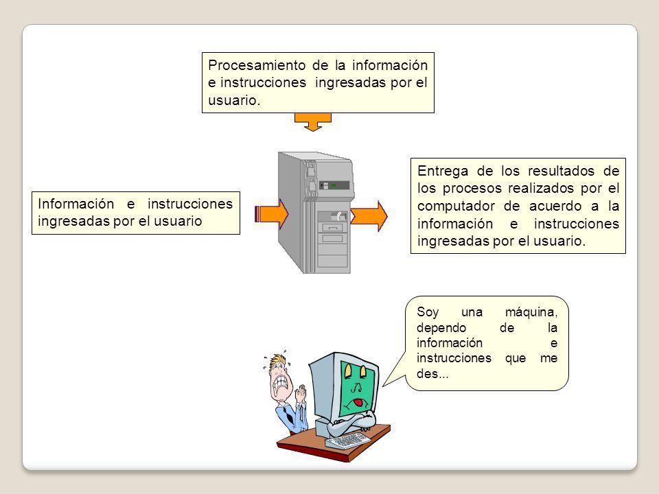 Información e instrucciones ingresadas por el usuario