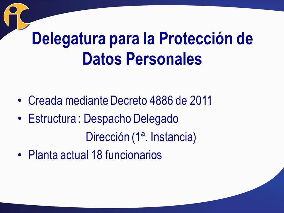Delegatura para la Protección de Datos Personales