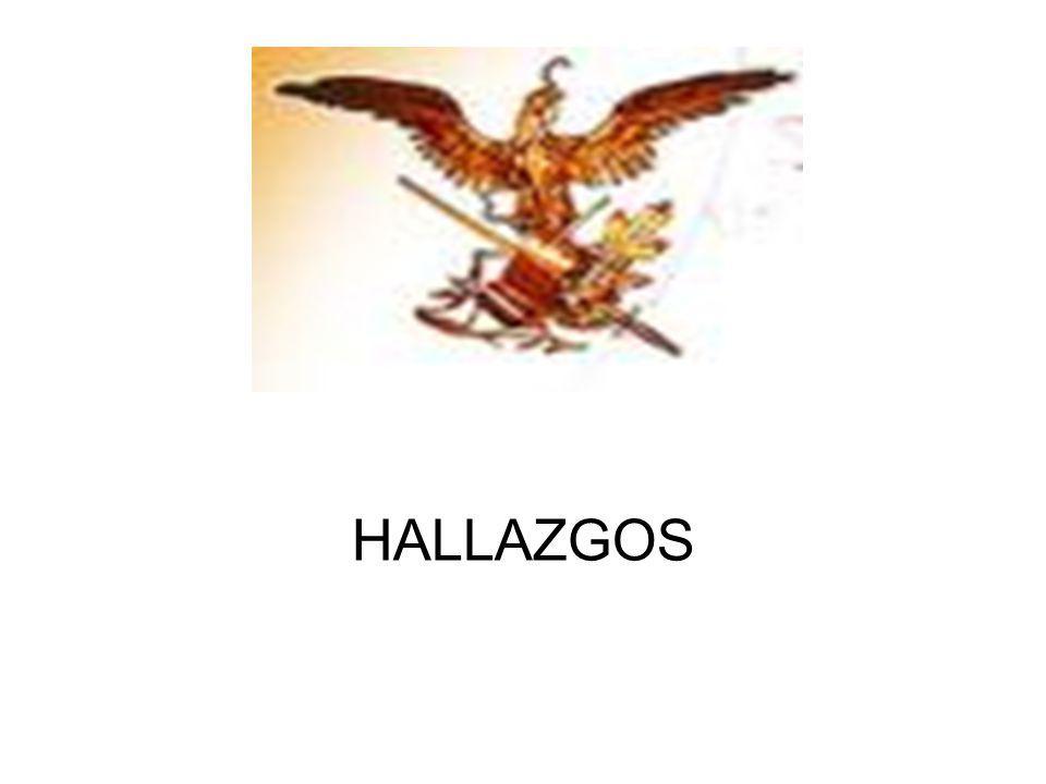 HALLAZGOS
