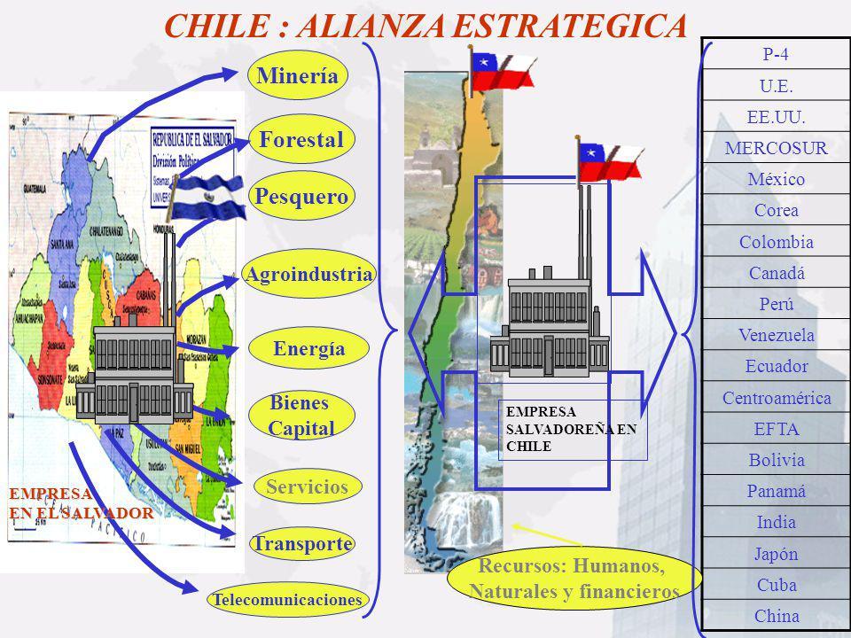 CHILE : ALIANZA ESTRATEGICA Naturales y financieros