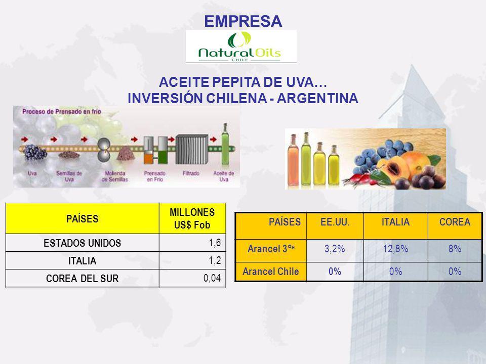 INVERSIÓN CHILENA - ARGENTINA