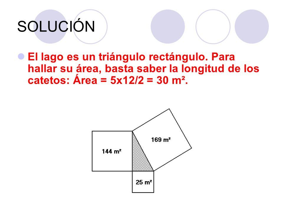 SOLUCIÓNEl lago es un triángulo rectángulo.