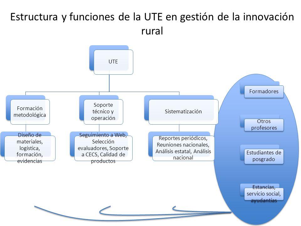 Estructura y funciones de la UTE en gestión de la innovación rural