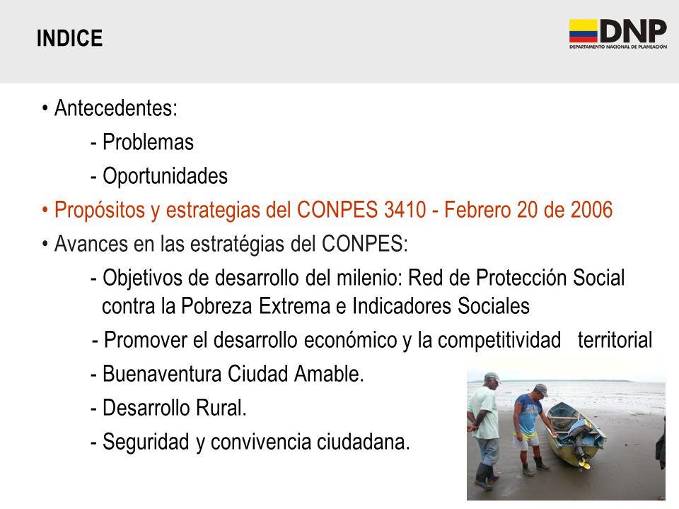 INDICE Antecedentes: - Problemas. - Oportunidades. Propósitos y estrategias del CONPES 3410 - Febrero 20 de 2006.