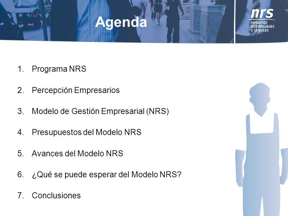 Agenda Programa NRS Percepción Empresarios