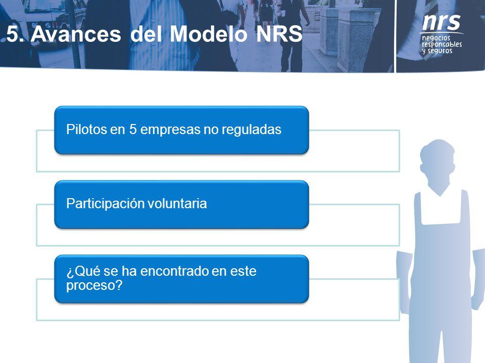 5. Avances del Modelo NRS ¿Qué se ha encontrado en este proceso