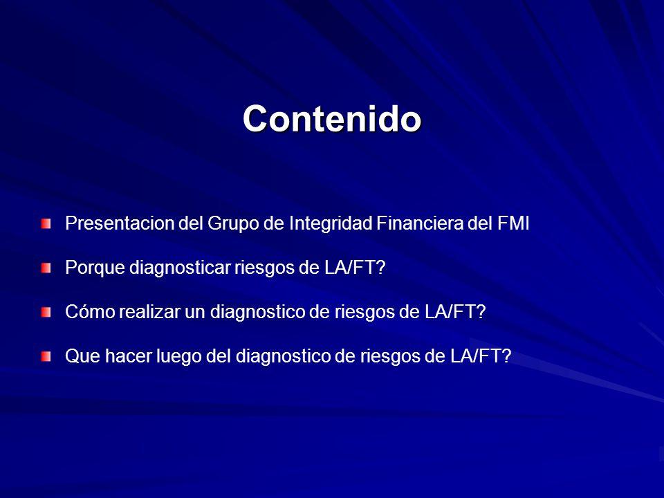 Contenido Presentacion del Grupo de Integridad Financiera del FMI