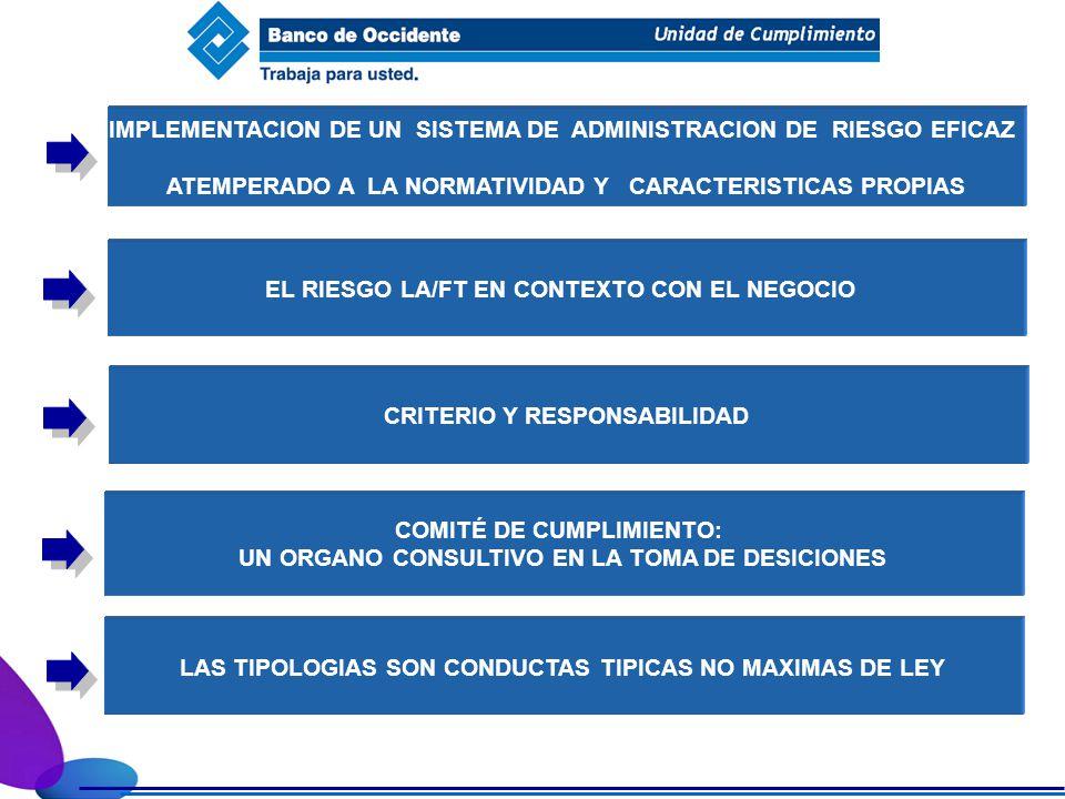 IMPLEMENTACION DE UN SISTEMA DE ADMINISTRACION DE RIESGO EFICAZ