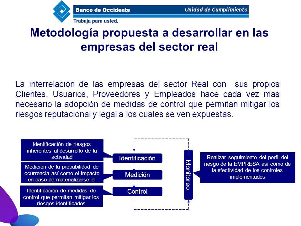 Metodología propuesta a desarrollar en las empresas del sector real
